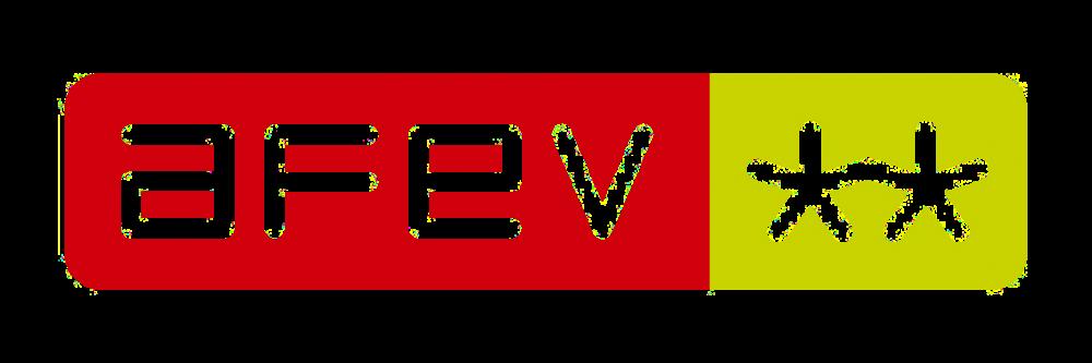 AFEV Grenoble Y-Nove